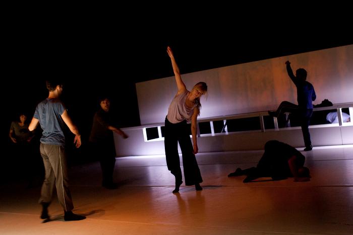 Chroniques du regard 2012-2013, no 4 : Autour de Fluide – Formation professionnelle des danseurs
