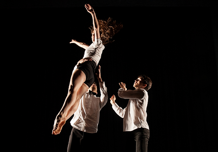 Chroniques du regard 12-13, no 6 : Gold d'Hélène Blackburn et Pierre Lecours avec la précieuse collaboration des danseurs