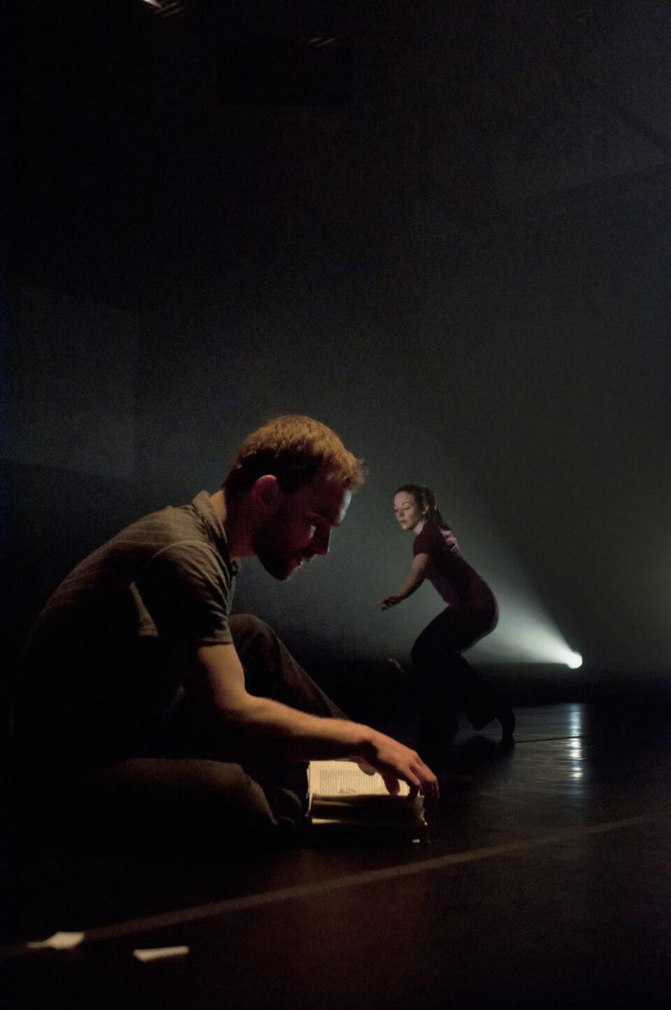 Chroniques du regard 2012-2013, hors-série : Marquer la danse