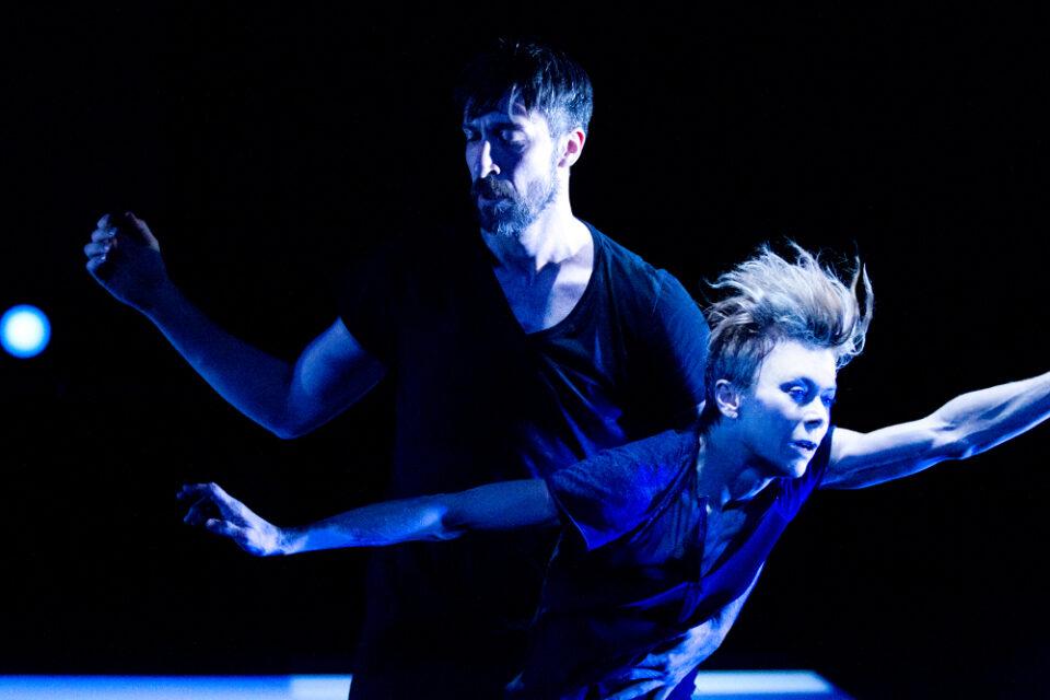 Chroniques du regard 2014-2015 – So Blue par Louise Lecavalier