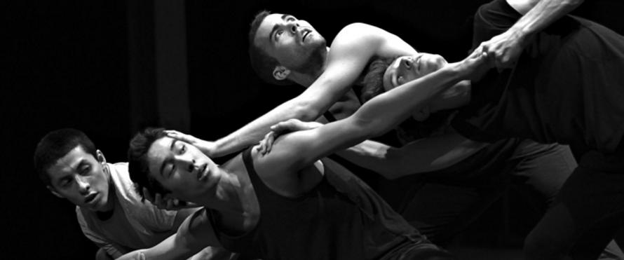 Auditions pour Springboard Danse Montréal 2016