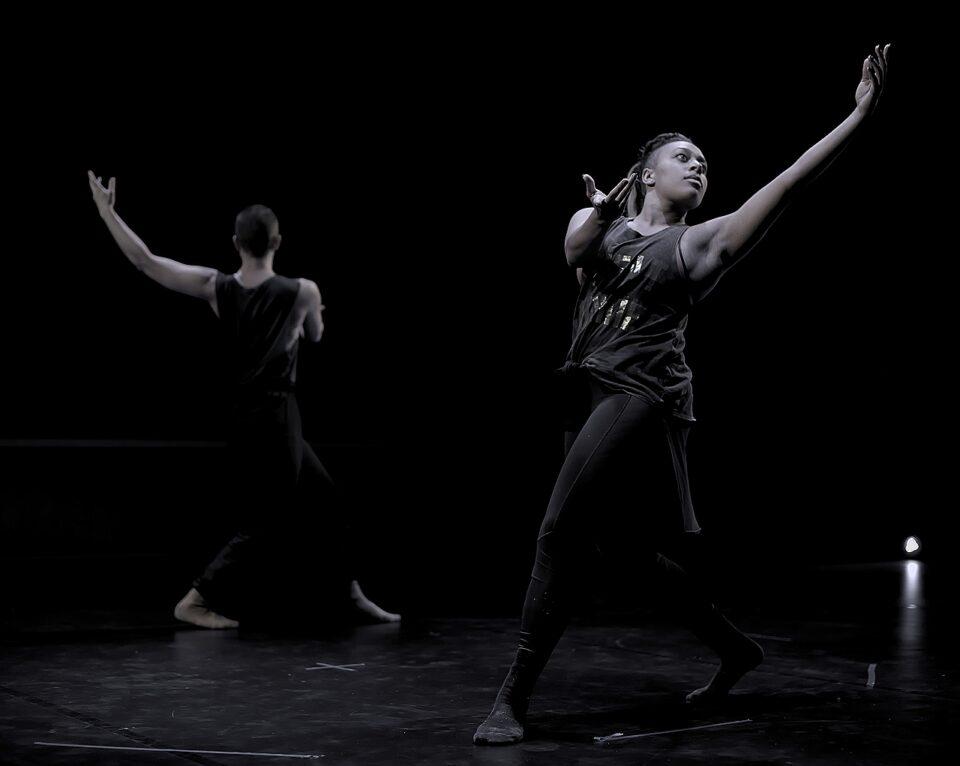 Auditions – Danseurs/Danseuses recherché(e)s – Compagnie Wu Xing Wu Shi