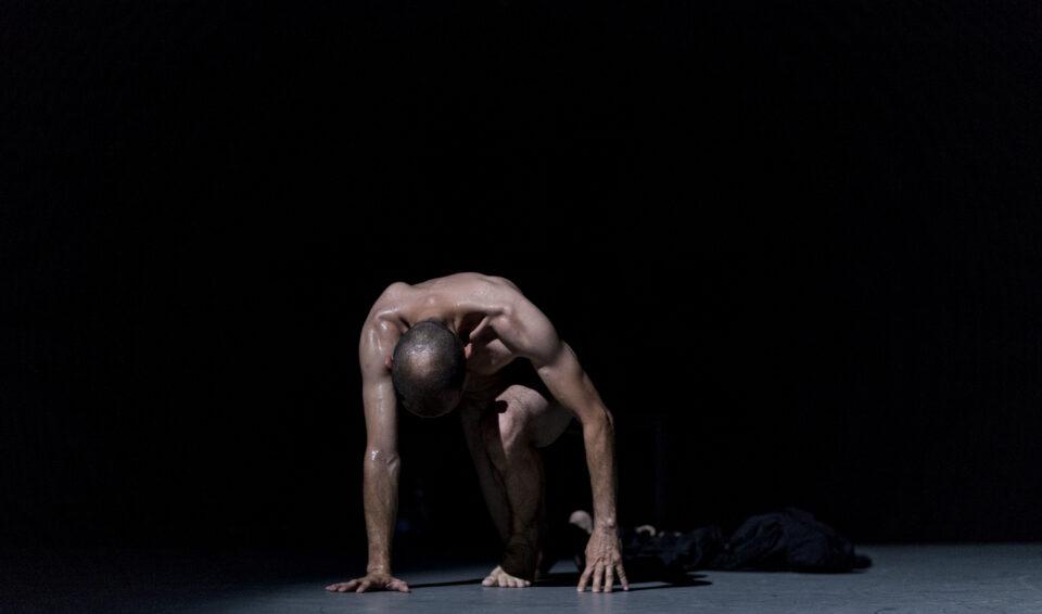 Rites: denses danses par Robert Boisclair, Les Enfants du Paradis