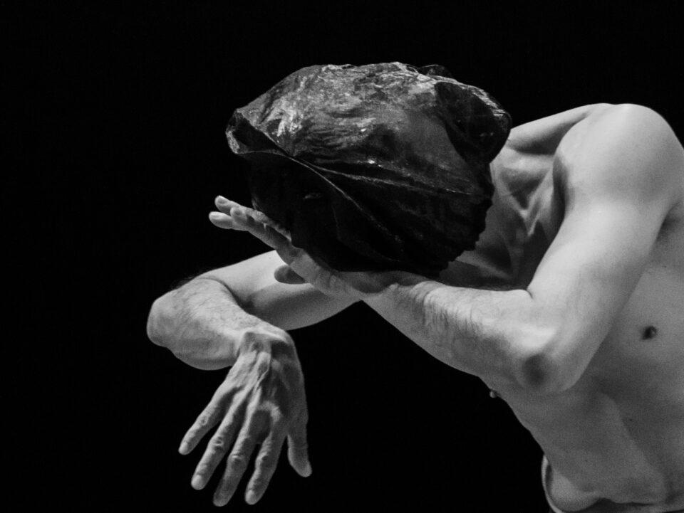 «Sur les ailes de José Navas» par Claude Chevalot, spectatrice