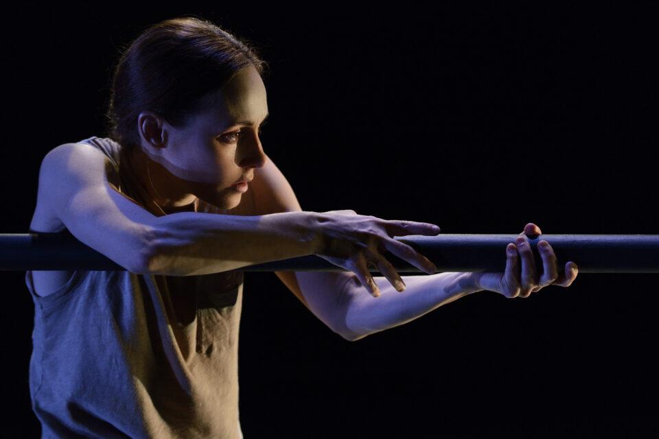 Le grand retour d'Anne Plamondon, Agora de la danse