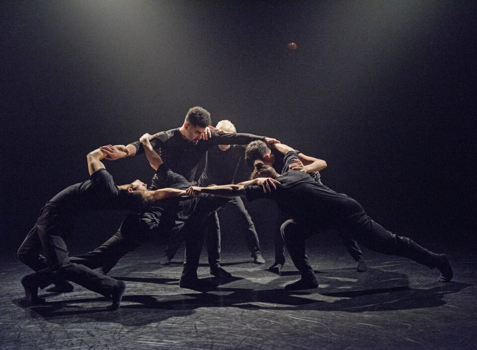 Wen Wei Dance : le mouvement comme langage universel   Article   Voir